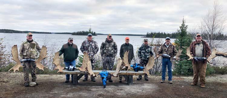 moose1-2019