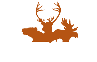 Moose Hunting North